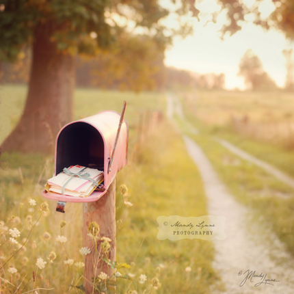 copyright-mandylynne-photo-pink-mailbox-1